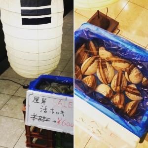 年度末スペシャルセール!! 数量限定で 厚岸産『活ほっき貝』 通常¥880が30%offの¥600  刺身でも、焼いても、天ぷらも美味しい 『ほっき』お見逃しなく!  #二三一 #海鮮 #酒蔵